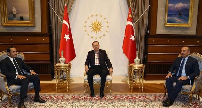 أردوغان يلتقي وزير خارجية قطر في أول زيارة لمسؤول عربي عقب محاولة الانقلاب