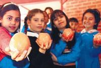Nutrition literacy key to stopping obesity epidemic
