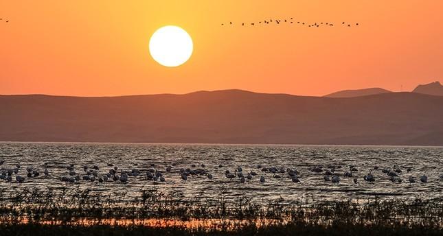 مساعي تركية لوضع بحيرة فان على لائحة التراث العالمي