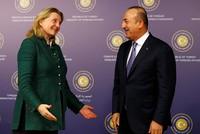 Turkish FM Çavuşoğlu, Austrian counterpart Kneissl 'agree to normalize relations'