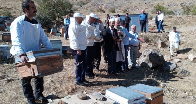 Bees attack participants in honey harvesting ceremony in eastern Turkey
