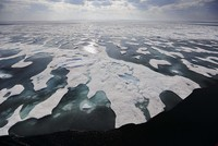 'Troubling' amount of microplastics detected in Arctic sea ice: researchers