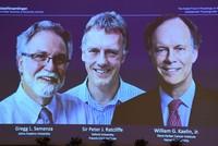 Nobel Medicine Prize awarded for work on cells, oxygen