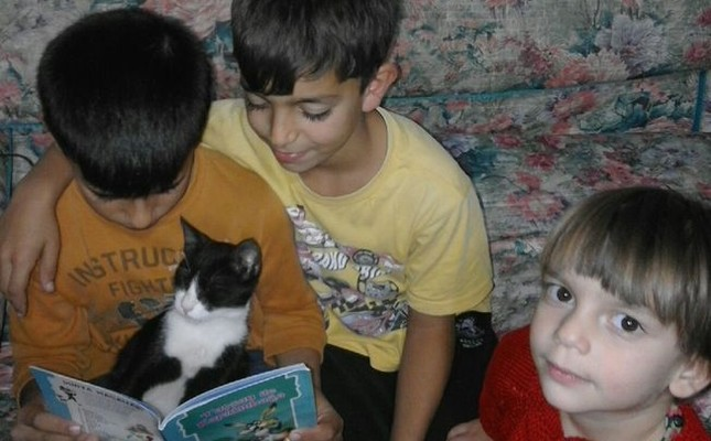 Ahmed Ibrahim, a 9-year-old Syrian living in Turkey, won an international reading award for a photo of him reading with his cat. (Photo from Ibrahim Gök via Padlet)