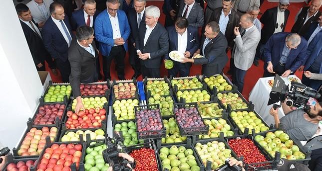 جنوب شرقي الأناضول التركية تصدر منتجات زراعية لـ 145 دولة