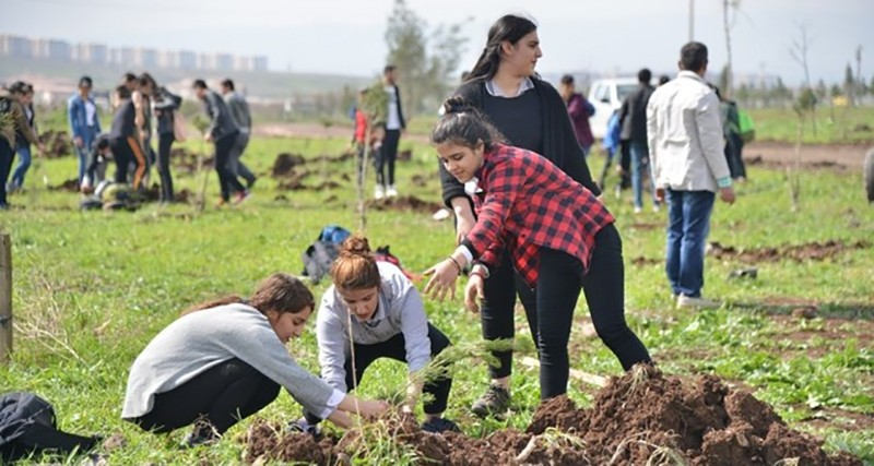 Students plant trees in southeastern city of Diyarbaku0131r's Kayapu0131nar district for a new forest. (Sabah File Photo)