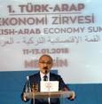 وزير تركي يدعو رجال الأعمال العرب والأتراك للعمل سوية عبر شركات مشتركة