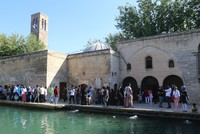 The Southeastern Anatolia Region, which is often visited by local and foreign tourists for its historical places, unique tastes and religious tourism, has become the favorite place in Turkey for...
