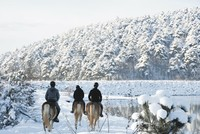 On the foothills of Mt Uludağ, horse riding is more than a sport