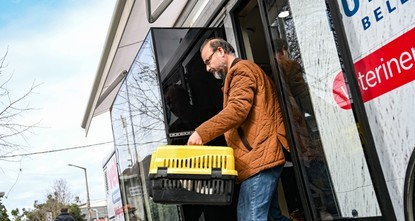 Vetbus offers stray animals chance to feel at home
