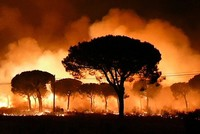 A forest fire in southern Spain has forced the evacuation of 1,000 people and is threatening a national park famous for its biodiversity, authorities said Sunday.  The flames have advanced...