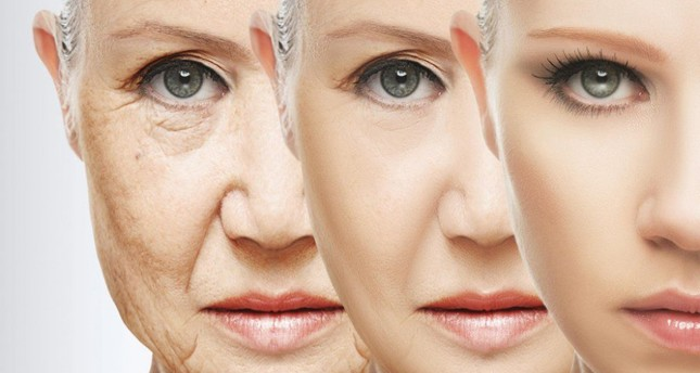 Scientists discover new chemical that reverses effects of aging
