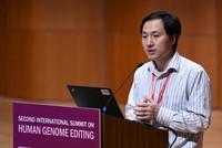 Genmanipulation: Forscher müssen Arbeit beenden