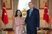 President Erdoğan hosts Japanese Princess Akiko in Istanbul