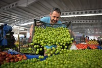 Turkey's inflation falls by 0.27 percent in June, annual inflation at 4-month-low with 10.9 percent