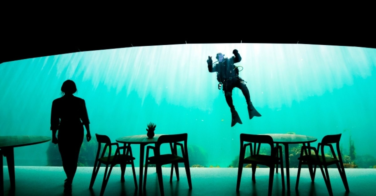 This file photo taken on May 2, 2019 shows a diver cleaning the outside of a viewing window of Under, a restaurant that is semi-submerged beneath the waters of the North Sea in Lindesnes near Kristiansand (AFP Photo)