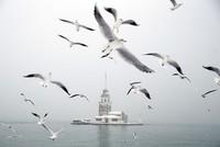 Heftiger Schneefall hat den Verkehr in Istanbul teilweise zum Erliegen gebracht. An den beiden internationalen Flughäfen der türkischen Metropole wurden am Samstag 500 Flüge gestrichen. Die...