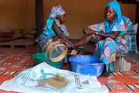 Seeds of hope for working women in rural Senegal