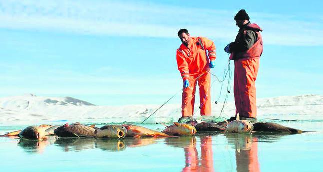 Keep it reel: Fishermen earn livelihood from frozen lake in Turkey's Muş