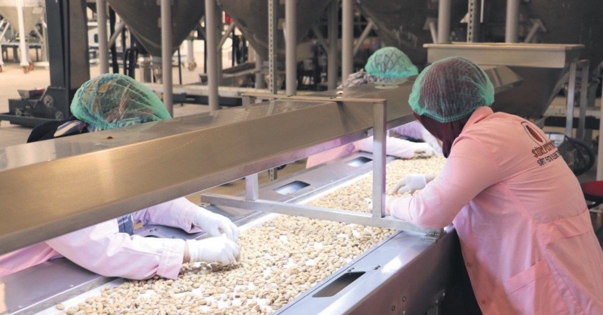 Workers do quality control at the Siirt Pistachio Processing plant, March 18, 2019.
