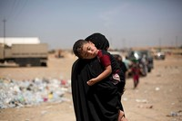 163 civilians executed by Daesh in Mosul on June 1, UN says