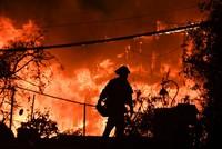 Waldbrände in Kalifornien: Mehr als 40 Opfer