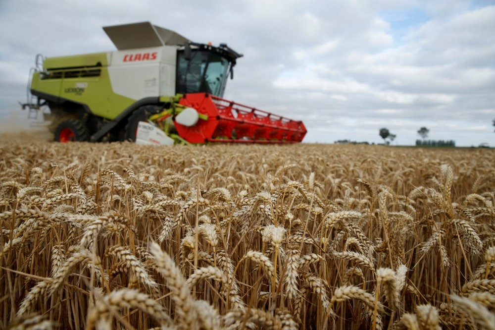 A farmer harvests wheat in Marquion, near Cambrai, France.
