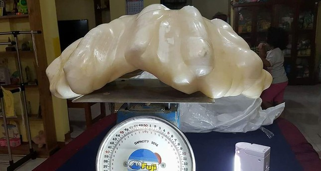 Fisherman keeps giant 34kg pearl under bed for a decade, turns out it's worth $100m