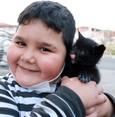 هل تجلب القطط السوداء الحظ السيء فعلاً وما هي حقيقة اضطهادها