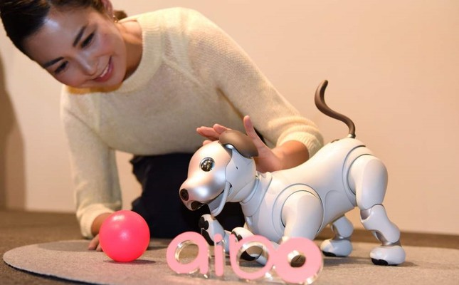 "Sony's new generation robot dog ""aibo"" is packed with artificial intelligence and internet capability."