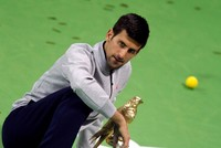 Novak Djokovic said he did not intentionally hit a ball into the crowd during his Qatar Open final against Andy Murray, an incident which threatened to take the gloss off his victory. The incident...