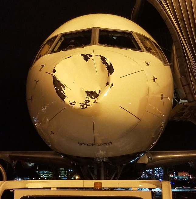 This photo shared by NBA star Steven Adams shows the nose of the plane which was damaged. (Twitter Photo)
