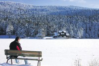 Bolu: Turkey's winter paradise with natural springs