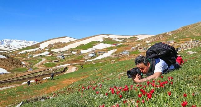 من المصورين الذي يرتادون المنطقة في الربيع (الأناضول)