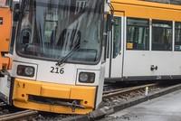 Beim Entgleisen einer Straßenbahn in Mainz sind 29 Menschen verletzt worden, darunter rund 10 Schulkinder. 23 Personen erlitten bei dem Unfall im Stadtteil Bretzenheim nahe einer Grundschule am...