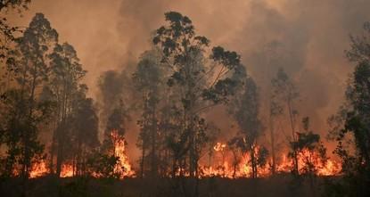 Eastern Australia wildfires kill 3, raze 150 homes