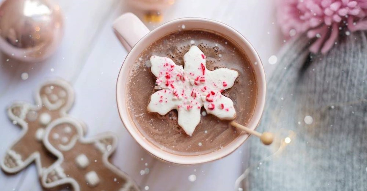 A cup of hot cocoa and some festive cookies will surely get you in the mood for Christmas. (Photo by Jill Wellington)