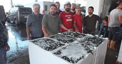 ارتفاع في صادرات الأسماك التركية إلى روسيا
