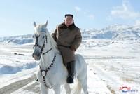 Kim rides white horse up North Korea's sacred peak