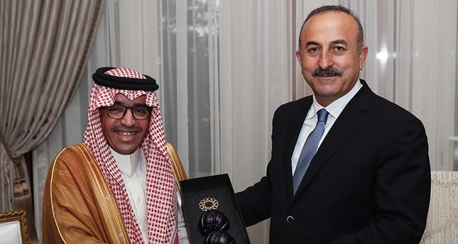 مسؤول عربي يبحث مع جاويش أوغلو استضافة تركيا القرية السياحية العربية