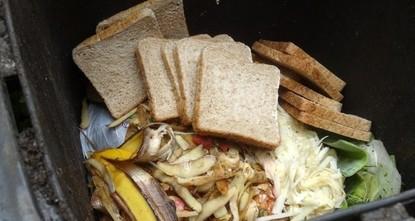 pJüngere Menschen in Deutschland werfen deutlich häufiger Lebensmittel in den Abfall als die ältere Generation. Das ergab eine Analyse des Instituts der deutschen Wirtschaft (IW) Köln, die der...