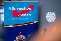 Germany's far-right AfD deletes Islam poll after unwanted result