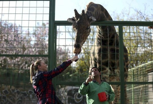Gaziantep Zoo is home to hundreds of different animal species. (AA Photo)
