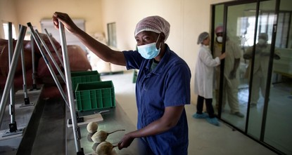 South African villagers tap into trend for 'superfood' baobab