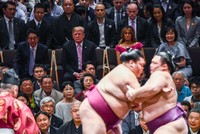 Japan's Abe courts Trump with golf and sumo wrestling amid trade talks