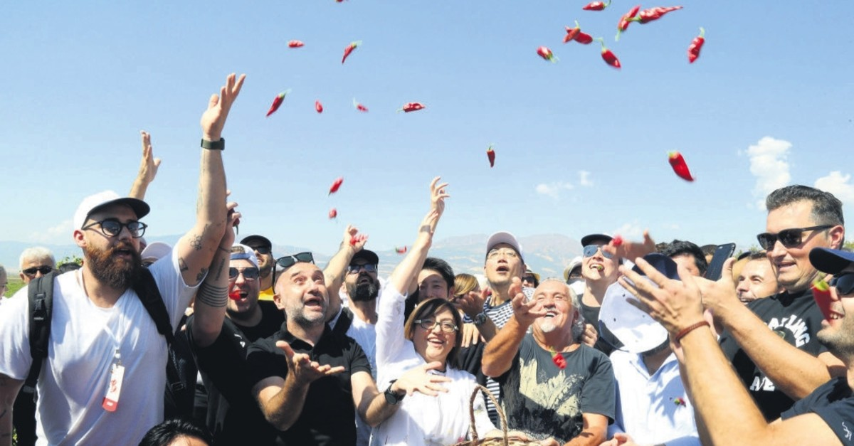 The festival attendees can visit red pepper fields and pick peppers themselves.
