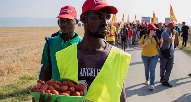 A migrant worker holds a basket of tomatoes during a march near Foggia, Aug. 8.