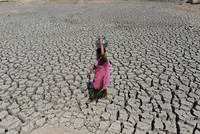 Land degradation could force hundreds of millions to migrate: report