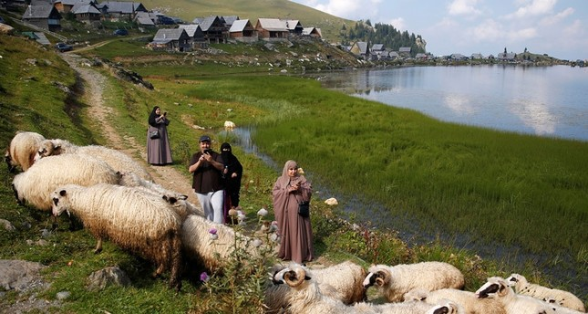 Tourists from the Middle East take pictures of sheep on the Prokosko Lake near Fojnica, Bosnia and Herzegovina, August 20, 2016.emREUTERS Photo/em