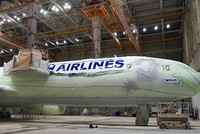 Turkish Airlines opens painting hangar to aviation enthusiasts